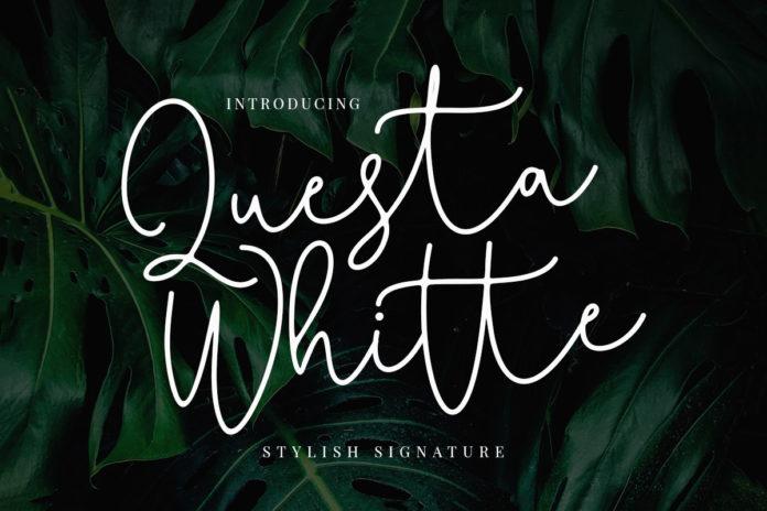 Free Questa Whitte Script Font