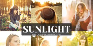 Free Sunlight Lightroom Preset
