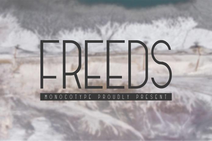 Free Freeds Modern Font