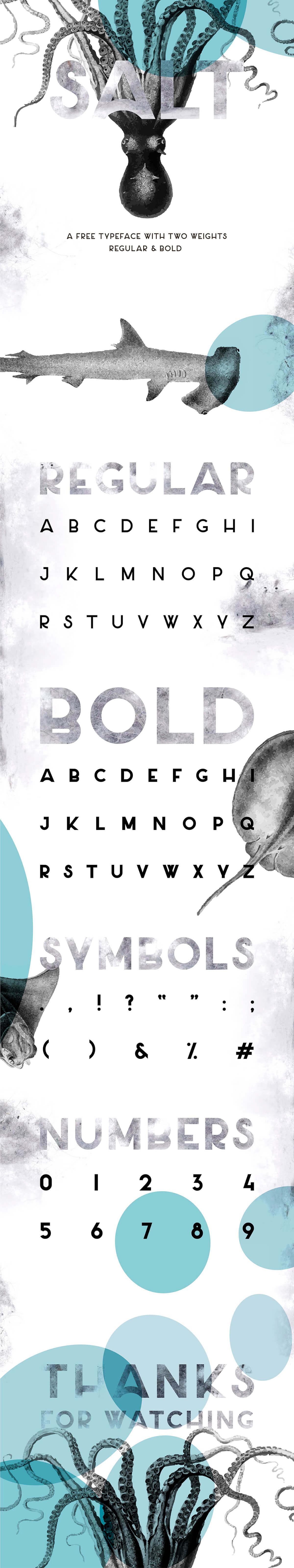 Free Salt Sans Serif Font Family