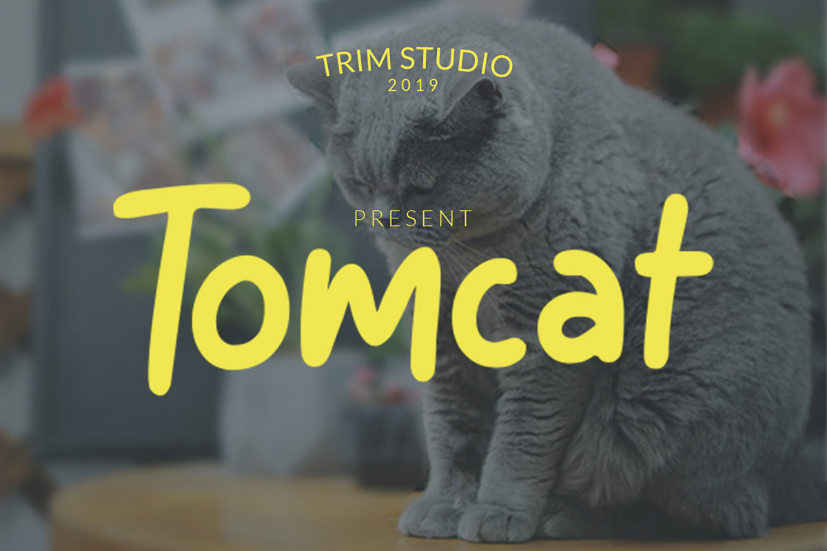 Free Tomcat Display Font