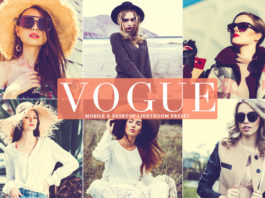 Free Vogue Lightroom Preset