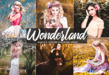 Free Wonderland Lightroom Preset