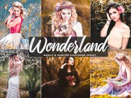 Free Wonderland Lightroom Preset