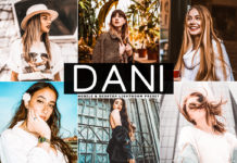 Free Dani Lightroom Preset