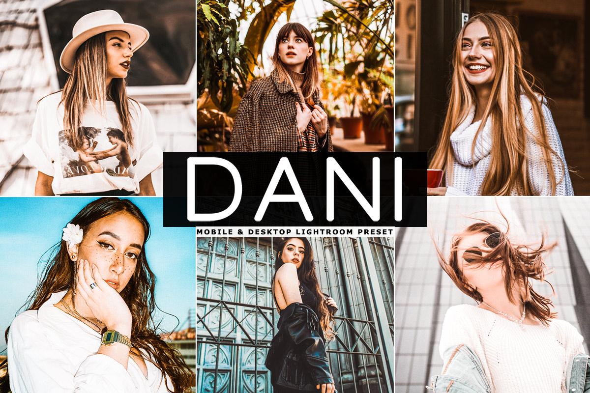 Free Dani Lightroom Preset