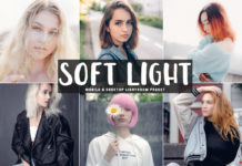 Free Soft Light Lightroom Preset