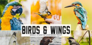 Free Birds & Wings Lightroom Preset