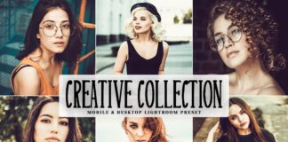 Free Creative Collection Lightroom Preset