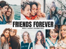 Free Friends Forever Lightroom Preset