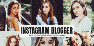Free Instagram Blogger Lightroom Preset