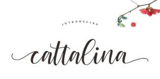 Free Cattalina Script Font