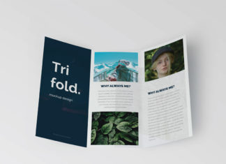 Free Trifold Brochure Mockup
