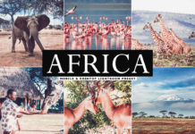 Free Africa Lightroom Preset
