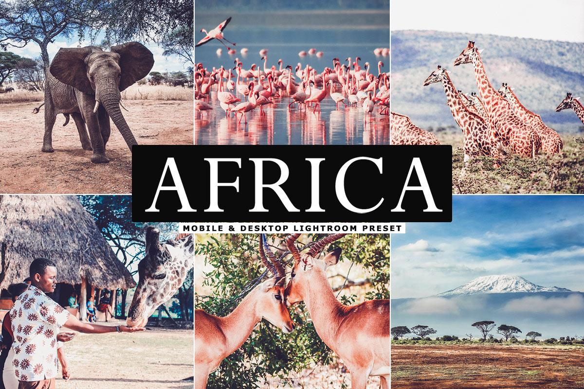 Free Africa Lightroom Preset