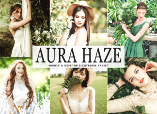 Free Aura Haze Lightroom Preset