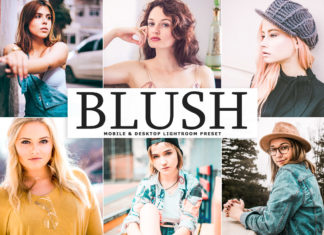 Free Blush Lightroom Preset