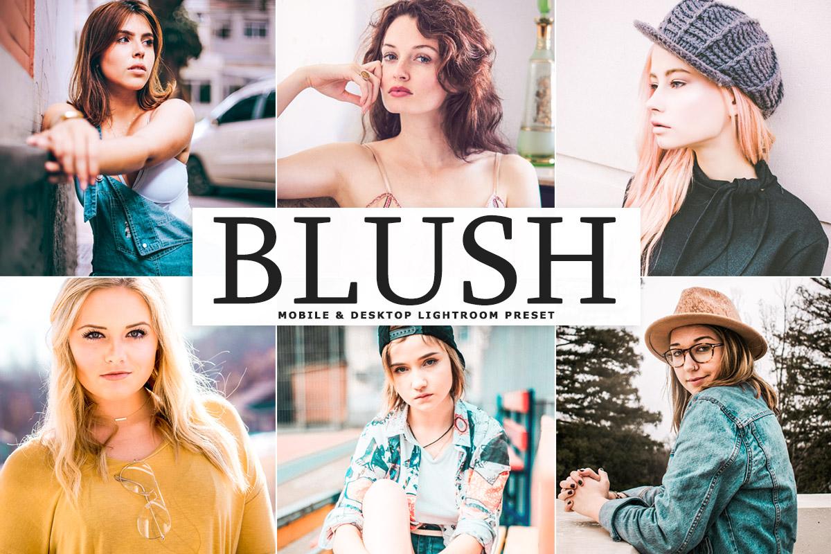 Free Blush Lightroom Preset