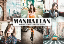Free Manhattan Lightroom Preset
