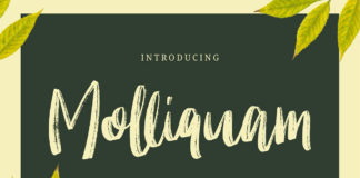 Free Molliquam Handwritten Brush Font