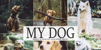Free My Dog Lightroom Preset