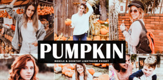 Free Pumpkin Lightroom Preset