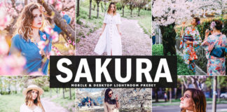 Free Sakura Lightroom Preset