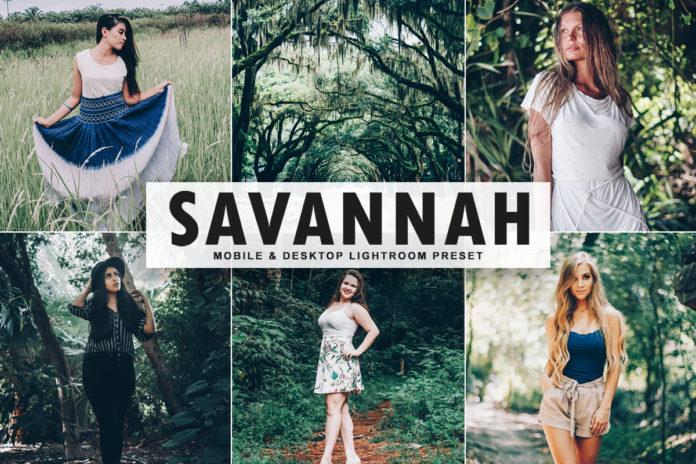 Free Savannah Lightroom Preset