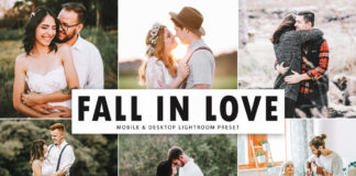 Free Fall In Love Lightroom Preset
