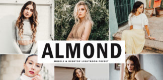 Free Almond Lightroom Preset