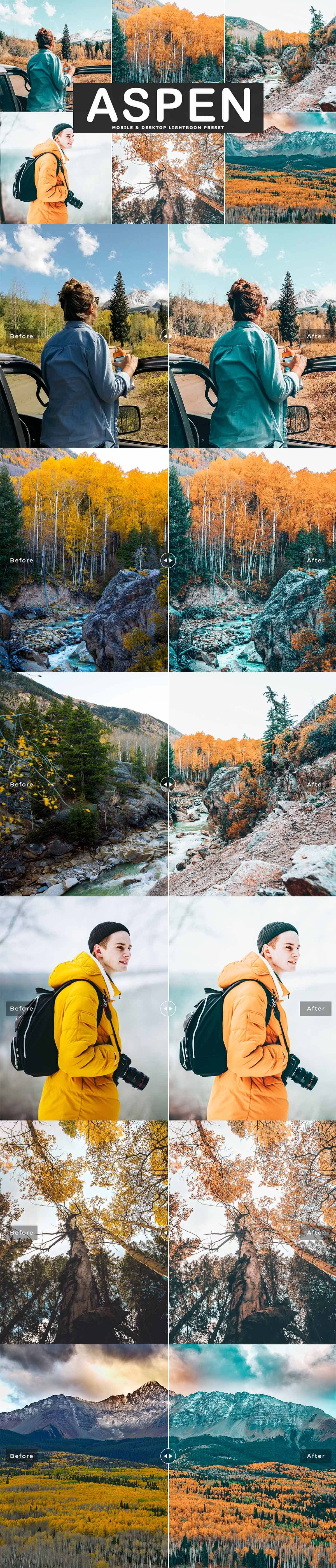 Free Aspen Lightroom Preset
