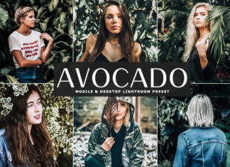 Free Avocado Lightroom Preset