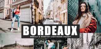 Free Bordeaux Lightroom Preset