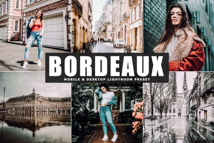 Free Bordeaux Lightroom Preset