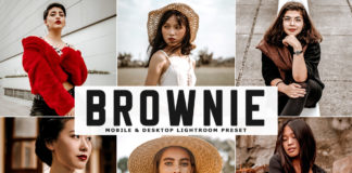 Free Brownie Lightroom Preset