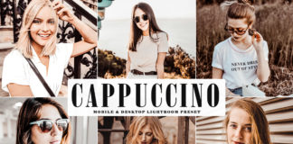 Free Cappuccino Lightroom Preset