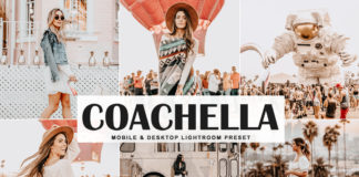 Free Coachella Lightroom Preset