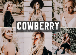 Free Cowberry Lightroom Preset