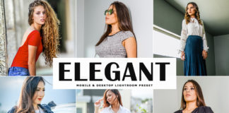 Free Elegant Lightroom Preset