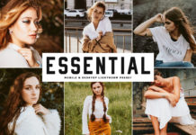 Free Essential Lightroom Preset