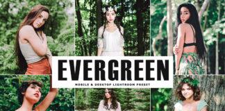 Free Evergreen Lightroom Preset