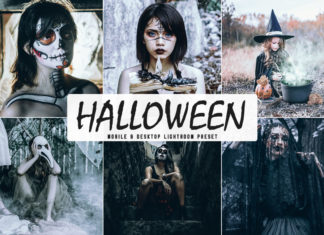 Free Halloween Lightroom Preset