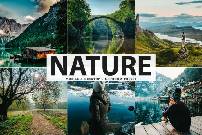 Free Nature Lightroom Preset
