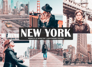 Free New York Lightroom Preset