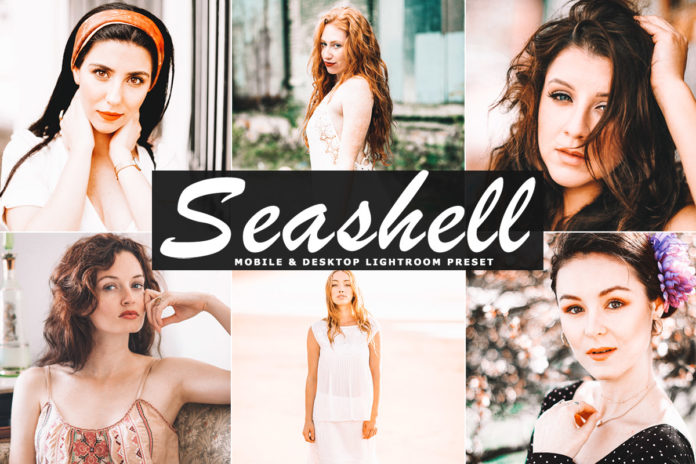 Free Seashell Lightroom Preset