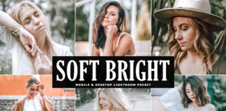 Free Soft Bright Lightroom Preset