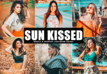 Free Sun Kissed Lightroom Preset