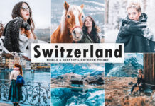 Free Switzerland Lightroom Preset