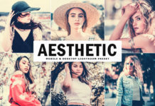 Free Aesthetic Lightroom Preset