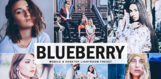 Free Blueberry Lightroom Preset